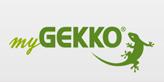 gekko - Kopie